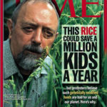 As it turned, out, this rice couldn't save any kids—its Vitamin A content wasn't high enough.