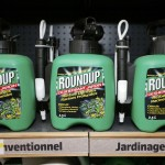 Roundup (photo: Charles Platiau/Reuters)