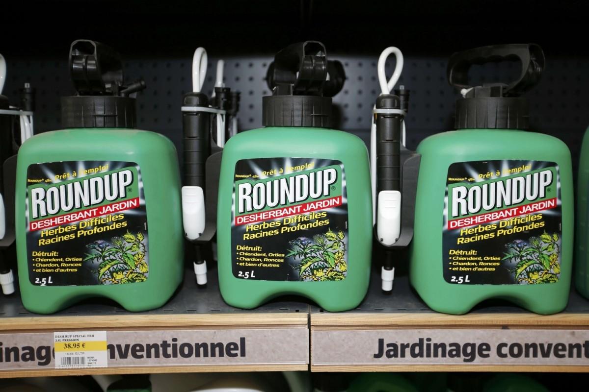 Roundup (photo: Charles Platiau/Reuters)