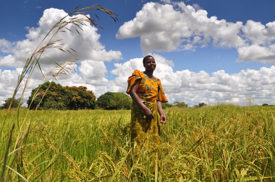 Small-scale farmer, Tanzania (cc photo: Oxfam)