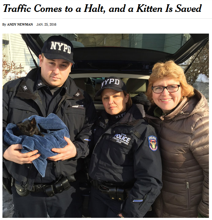 NYPD officers rescue a cat (Photo: NYPD)